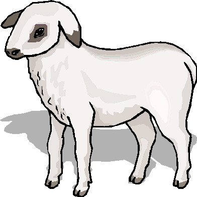 392x391 Sheep Lamb Clipart Black And White Free Images 7