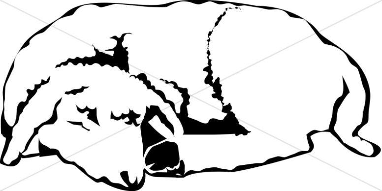 776x388 The Sleeping Lamb Christian Shepherd Clipart