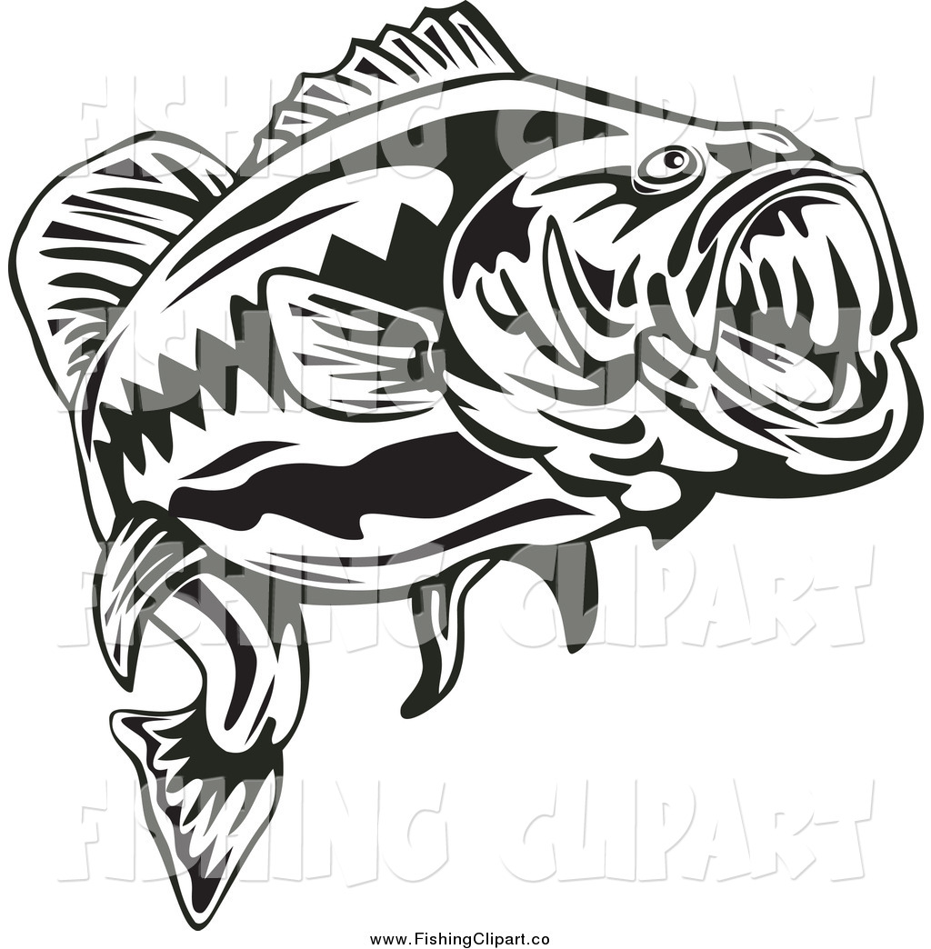 1024x1044 Clip Art Of A Black And White Largemouth Bass Fish By Patrimonio