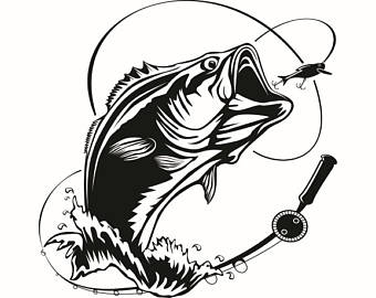 340x270 Trout Clipart Bass Fishing