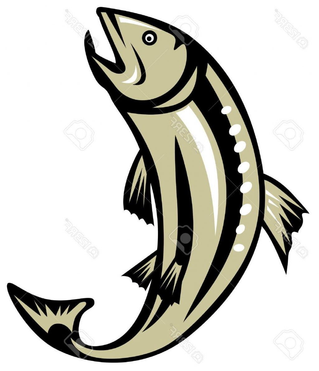 1024x1190 Unique Trout Jumping Stock Vector Salmon Fishing File Free