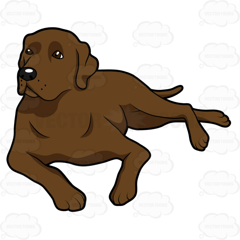 800x800 Dog Laying Down Clipart