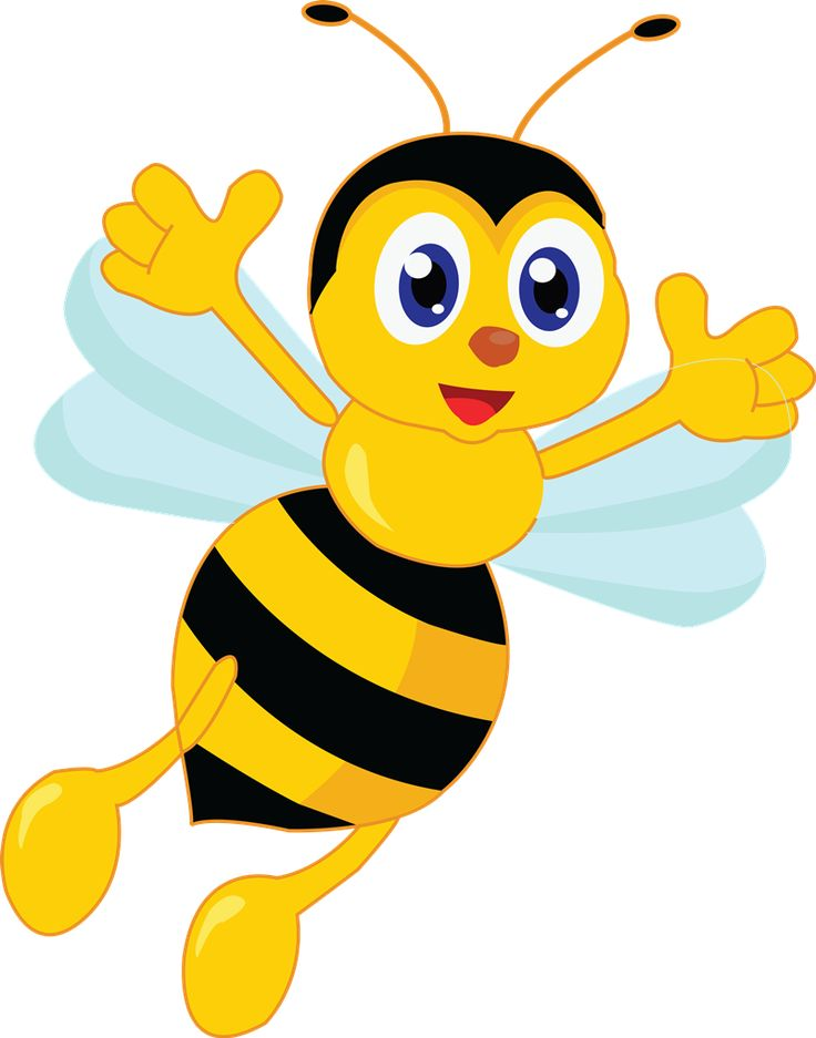 736x937 235 Best Bugs And Butterfies Clip Art Images Clip