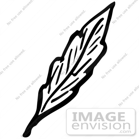 450x450 Clipart Of A Leaf In Black And White
