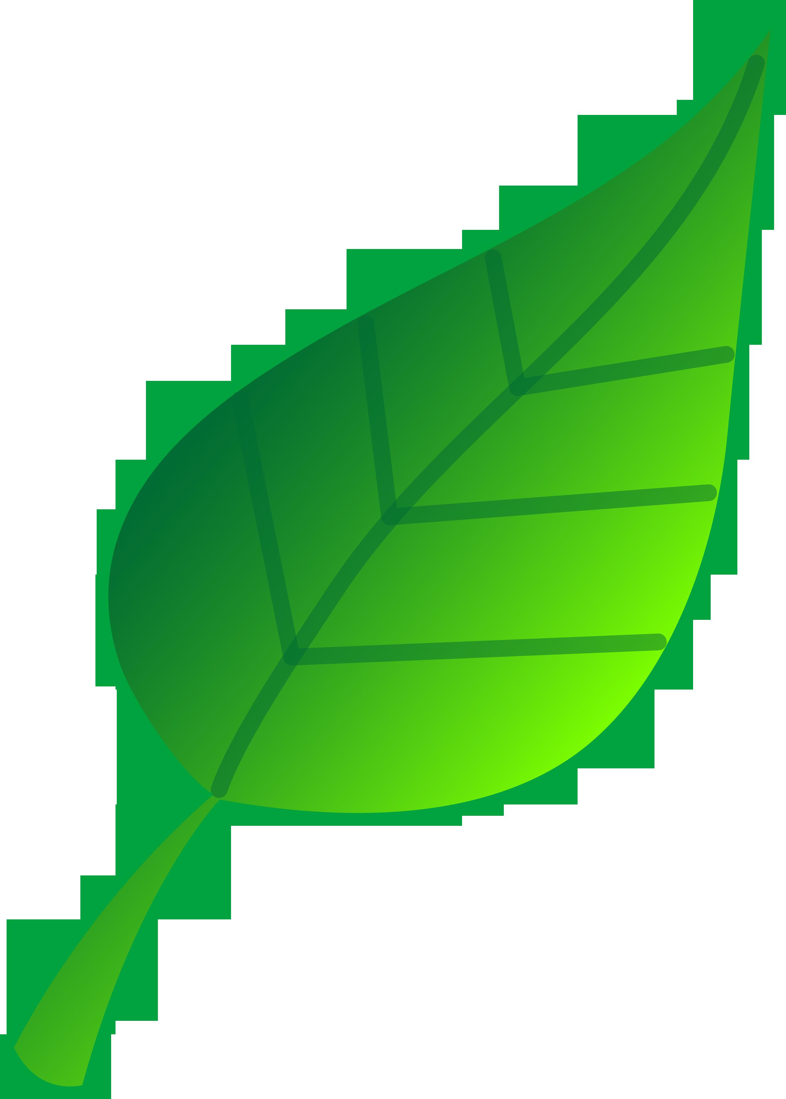 2504x3500 Clip Art Of Leaves