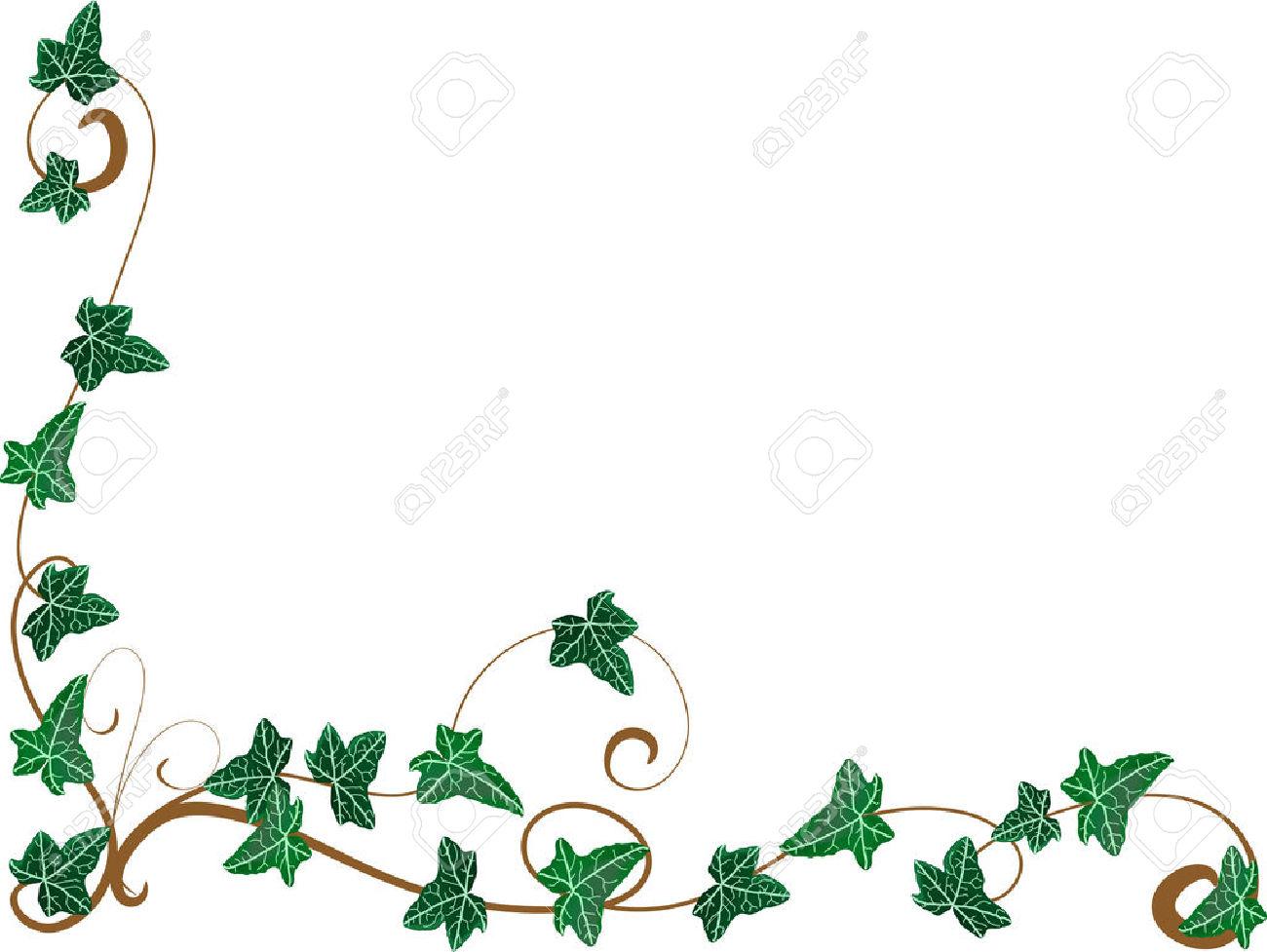 1300x977 Ivy Leaf Border Clip Art