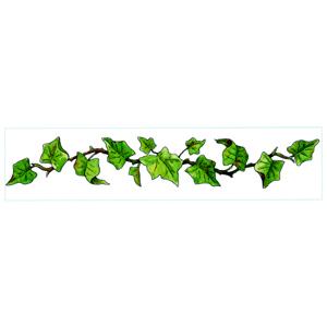 300x300 Border Clipart Ivy