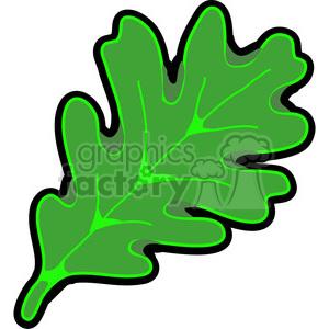 300x300 Royalty Free Green White Oak Leaf 387343 Vector Clip Art Image