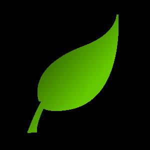 300x300 Green Leaf Clip Art