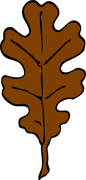 282x589 Brown Oak Leaf PNG, SVG Clip art for Web