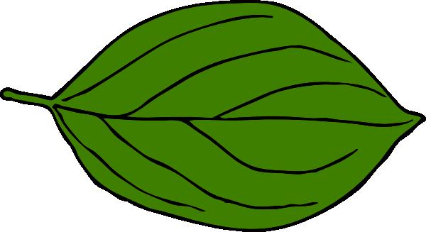 600x327 Dark Green Oval Leaf Clip Art