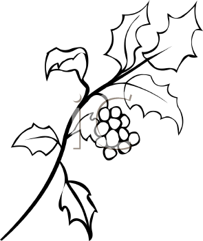 295x350 Holly Leaf Clipart Black And White