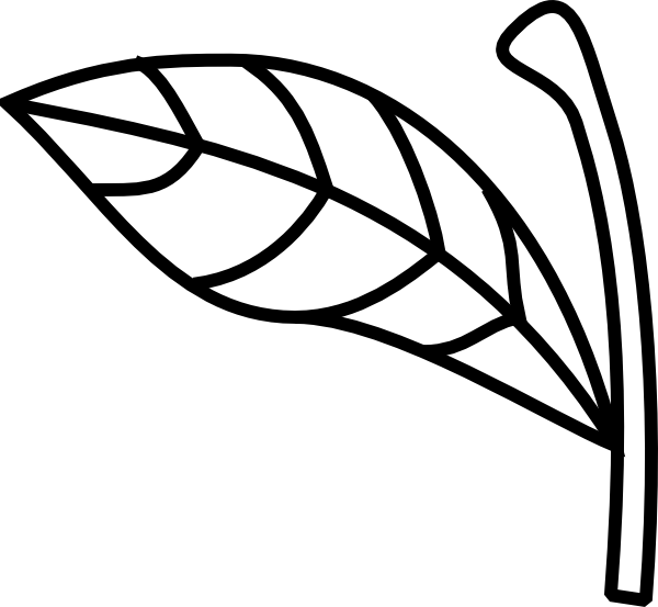 600x553 Stem Clipart Black And White