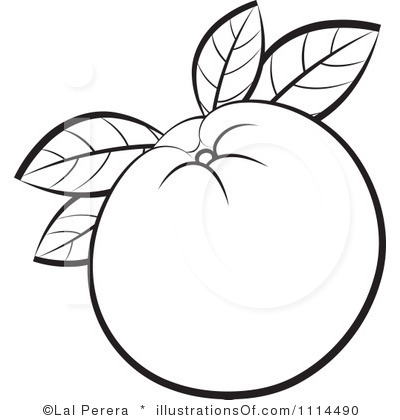 400x420 Orange (Fruit) Clipart Black And White