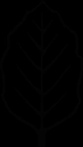 169x297 Free Leaf Outline Clip Art Clipart Panda
