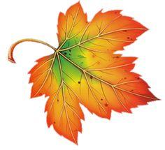 236x215 Clip Art Fall Leaves