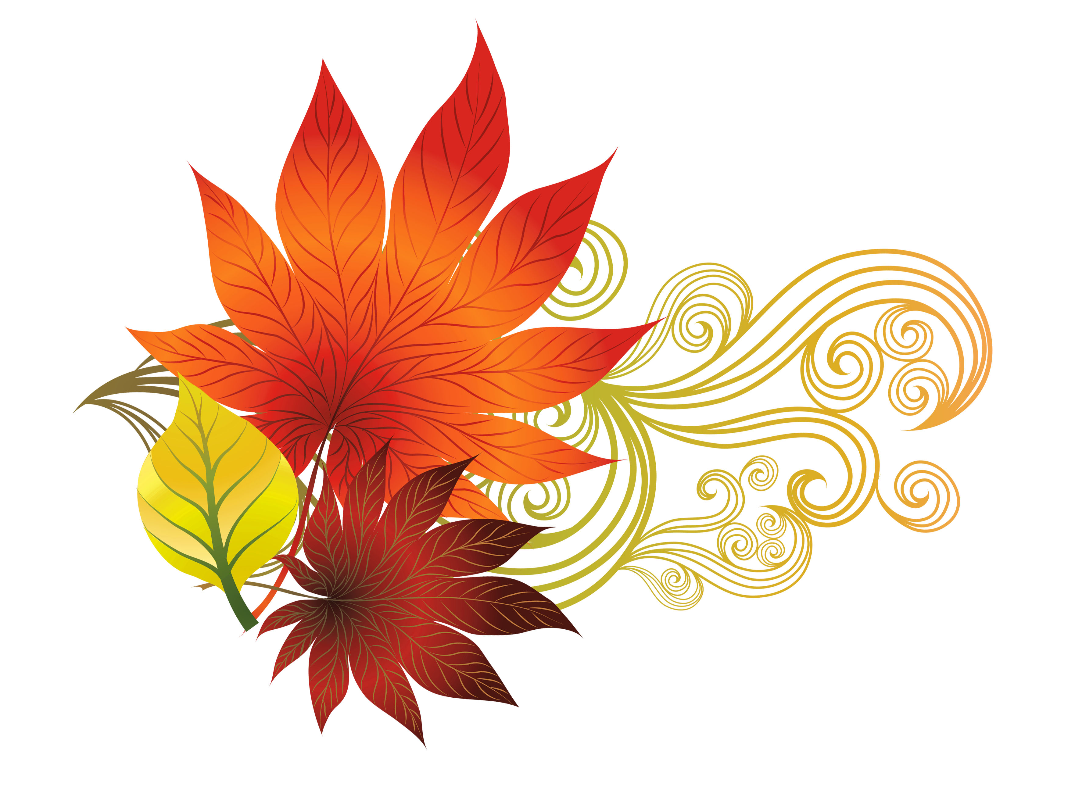 3525x2581 Fall Leaves Clip Art Many Interesting Cliparts