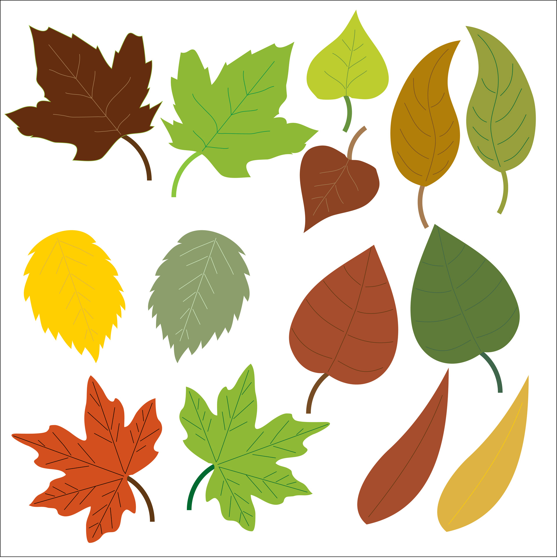 1917x1920 Leaves Clipart Free Stock Photo