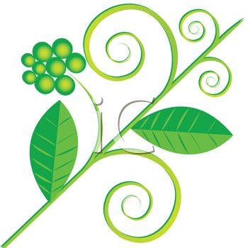 350x350 Royalty Free Clipart Image Leaf Flourish Design
