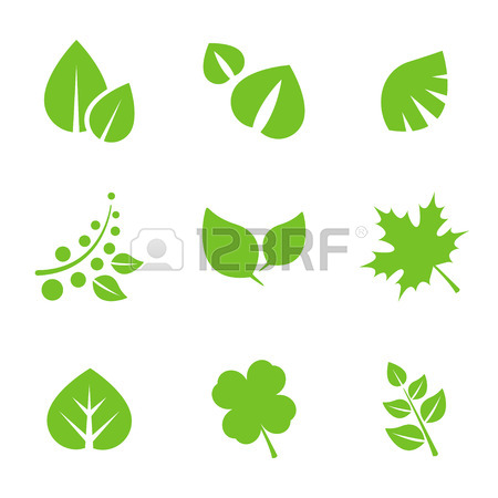 450x450 Set Of Green Leaves Design Elements. This Image Is A Vector
