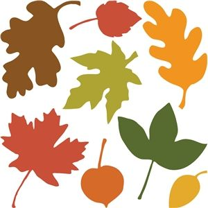 300x300 The Best Leaf Silhouette Ideas Silhouettes