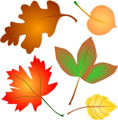 236x240 Fall Leaves Garland Clip Art