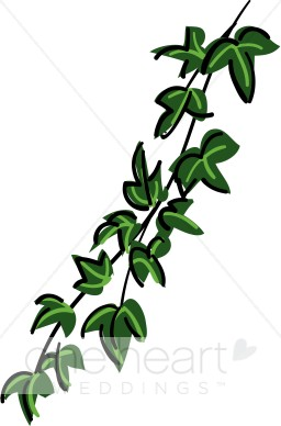 256x388 Green Ivy Garland Clipart Country Wedding Clipart
