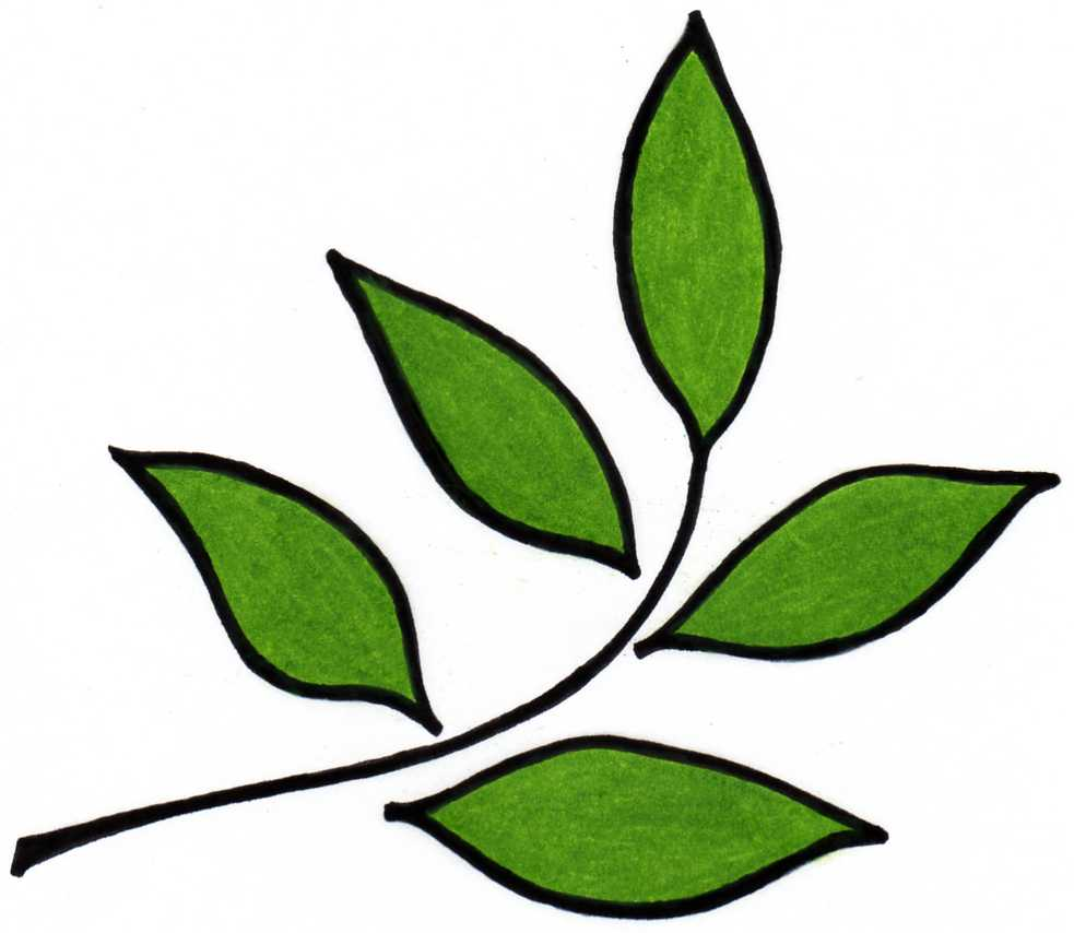 983x854 Design Clipart Leaf
