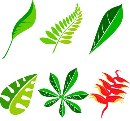 420x389 Free Leaf Vector Art Package Free Vector Graphics All Free Web