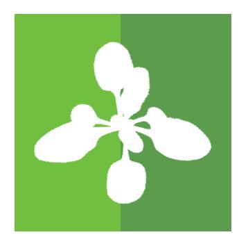 358x354 Plant Image Analysis Datasets