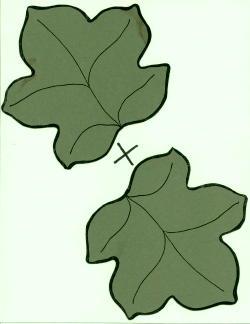 250x324 Pumpkin Leaf Printable Clipart