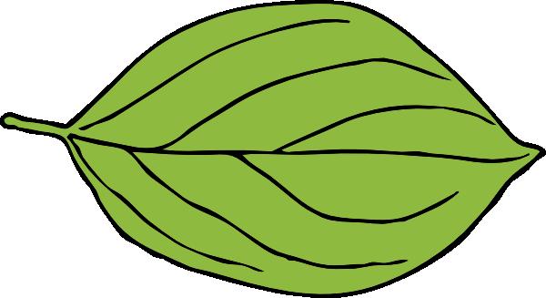 600x327 Single Leaf Clipart 1987147
