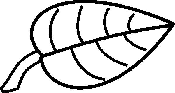 600x320 Leaf Outline Clipart Clipart Panda