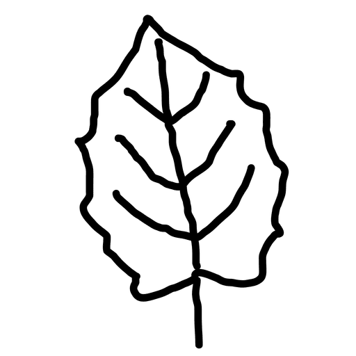 512x512 Outline Maple Leaf