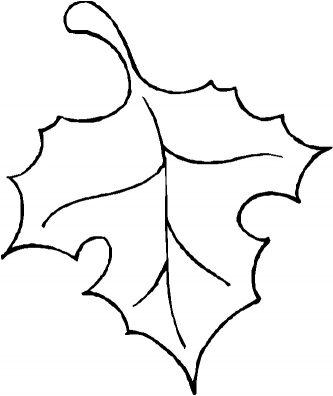 333x396 Leaf Outline Fall Leaves Outline Clipart 2 Leaf Outline Clipart