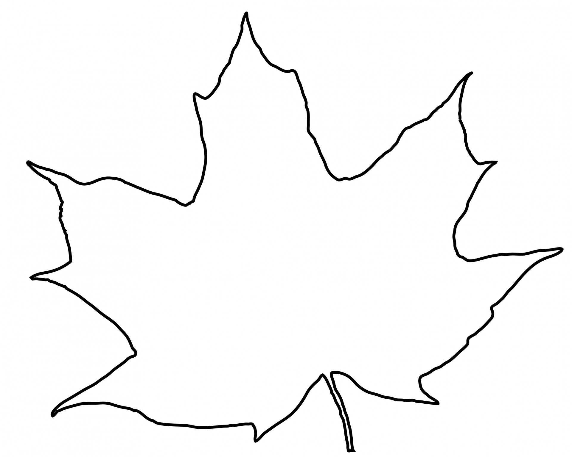 1920x1536 Leaf Outline Free Stock Photo