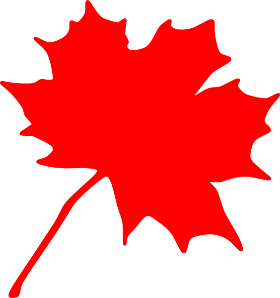564x599 Leaves Maple Leaf Outline Clipart Clipart Kid