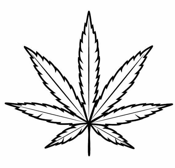 570x548 Marijuana Clipart Leaf Outline