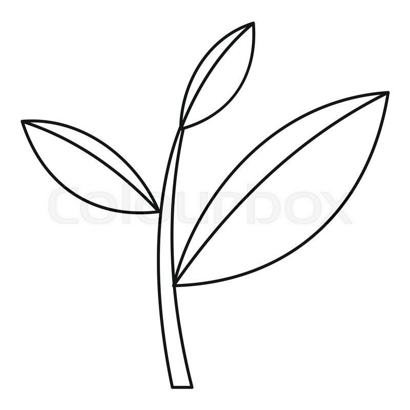 800x800 Tea Leaf Icon. Outline Illustration Of Tea Leaf Vector Icon