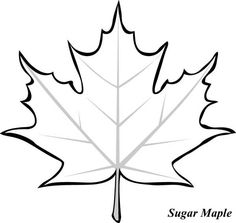 236x223 Fall Leaf Pattern Printables Leaves, Patterns And Fall Leaves