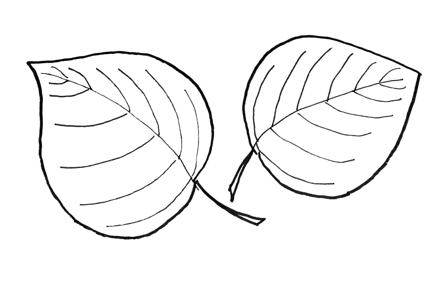 1855x1205 Fall Leaf Pattern Printables