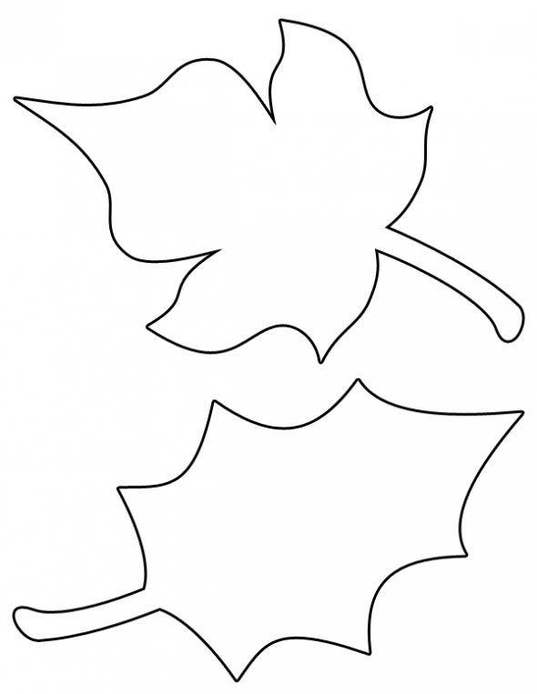 590x763 Leaf Clipart Colorful Leave
