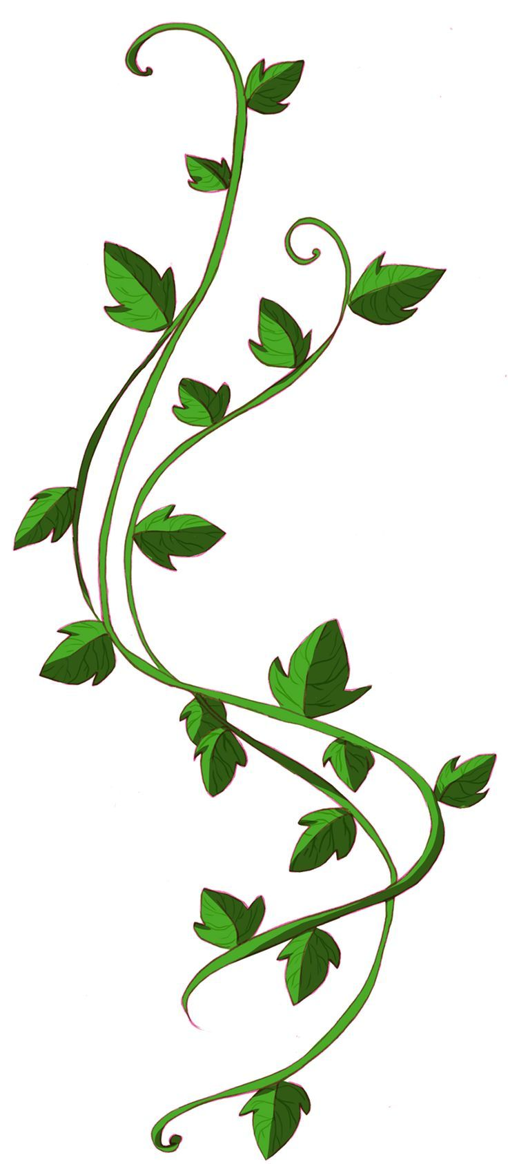 Leaf Vine | Free download on ClipArtMag
