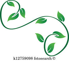 222x194 Vine Leaf Stock Photo Images. 59,386 Vine Leaf Royalty Free Images
