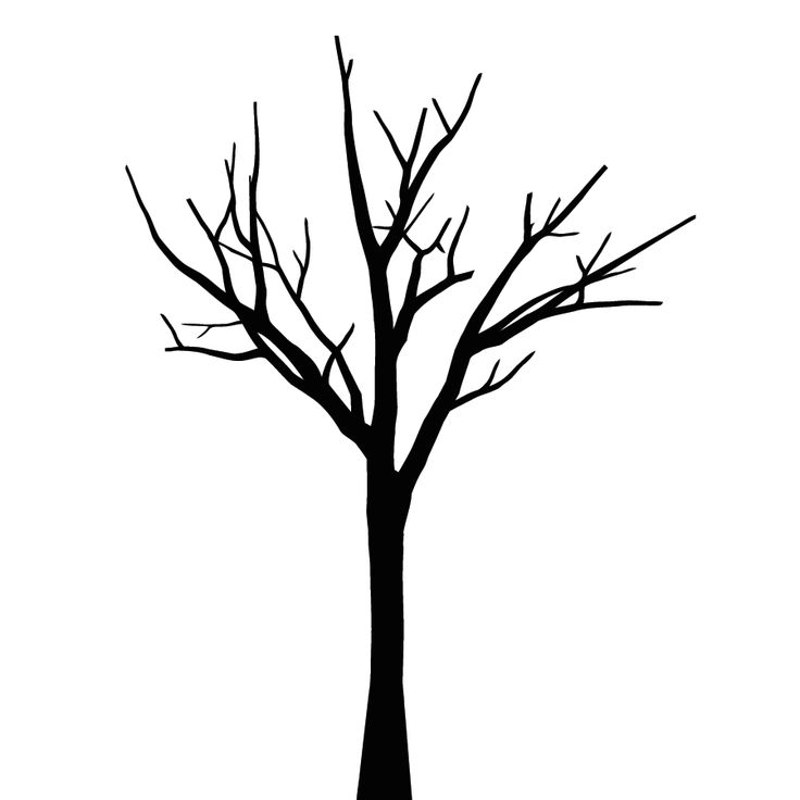 Leafless Tree Outline | Free download best Leafless Tree