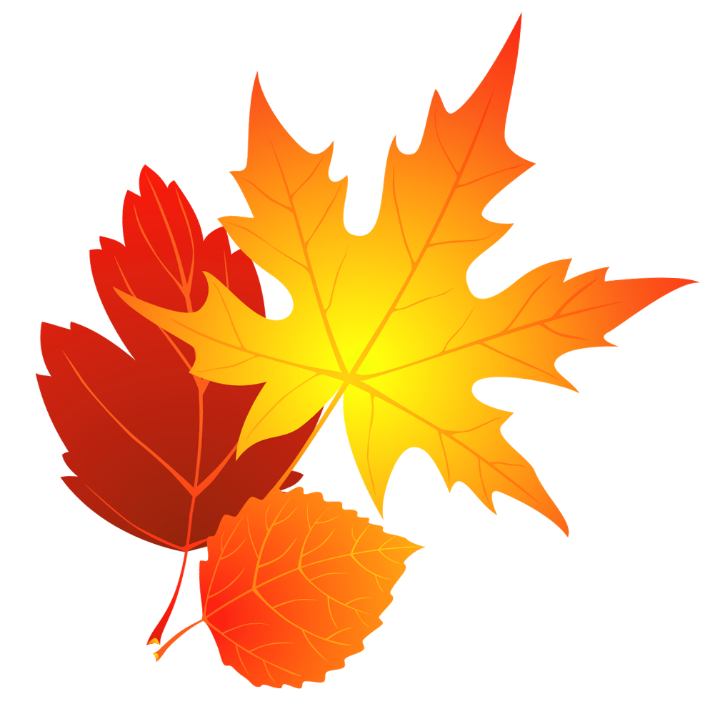 994x985 Changing Leaves Clipart