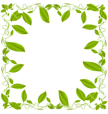 380x400 Green Leaf Border On White Clipart Panda