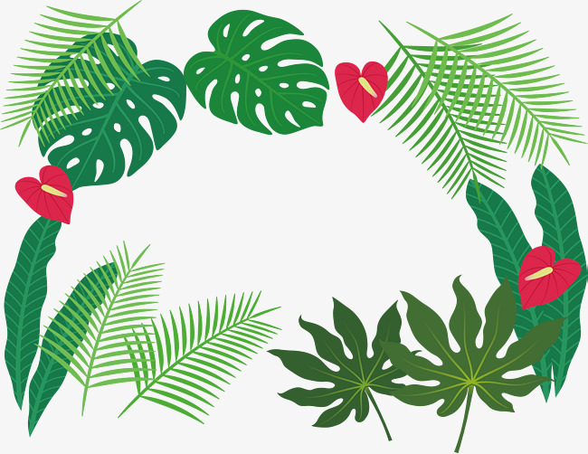 650x502 Tropical Plant Leaves Border, Vector Png, Green Leaves, Coniferous