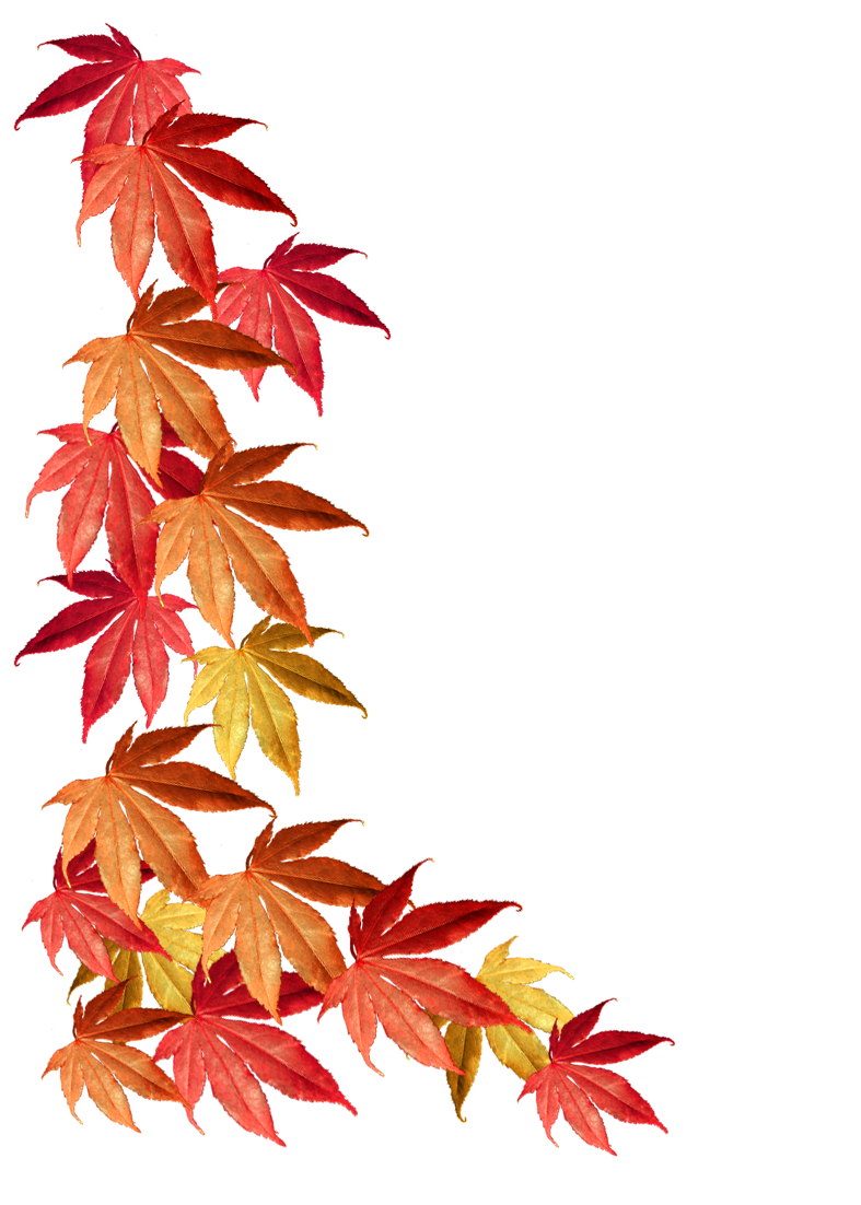 787x1102 Autumn Clipart Borders