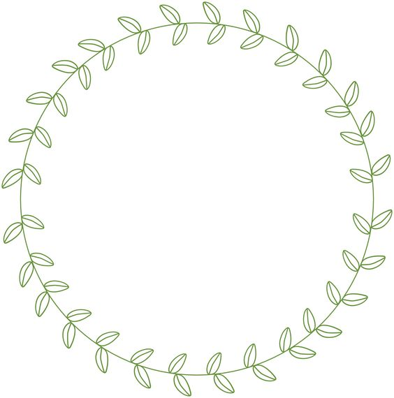 564x570 Circle Leaf Border